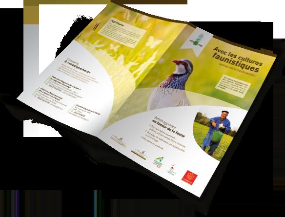 creation plaquettes et brochures