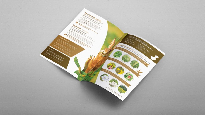 creation-edition-brochure-plaquette-federation-regionale-des-chasseurs-image-une-infographie