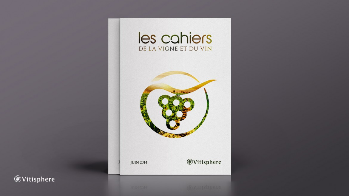 creation-edition-brochure-plaquette-vitisphere-infographie