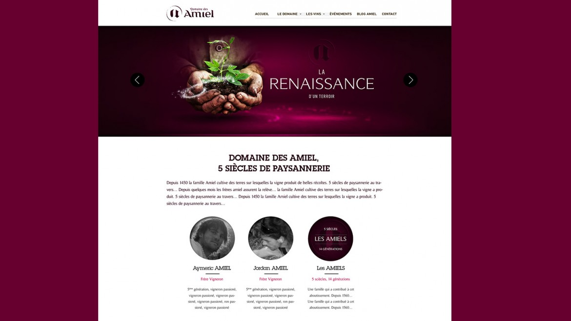 creation-site-internet-responsive-domaine-des-amiel-home-page